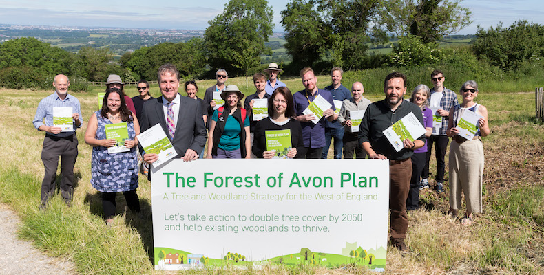 Environment | Tree coverage to double by 2050 in West of England